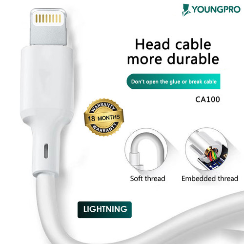 Foto Produk Youngpro CA-100 - Kabel Data 5A Fast Charging For Iphone 5 6 7 dari YOUNGPRO INDONESIA