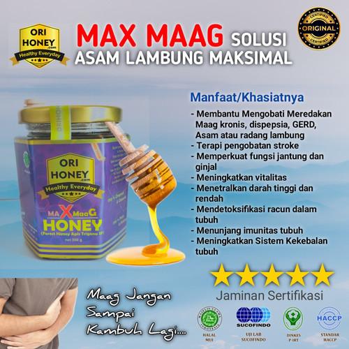 Foto Produk Obat Maag, Asam Lambung, Gerd, Anxiety Madu Asli MAXMaag 350 Gram dari Orihoney Official