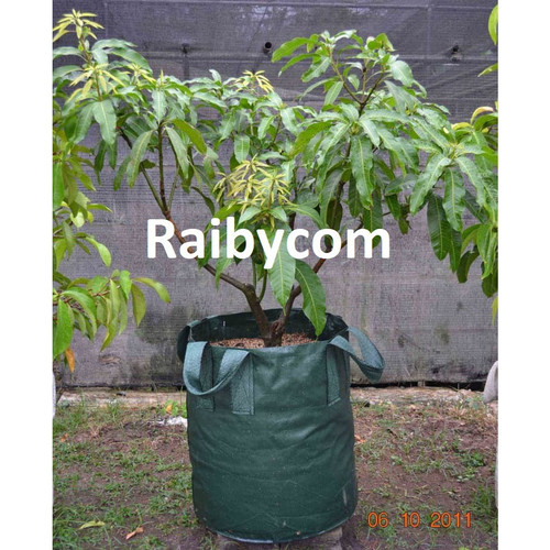 Foto Produk Planter Bag 250 Liter Easy Grow Jumbo Planterbag Pohon Buah Besar dari Raibycom