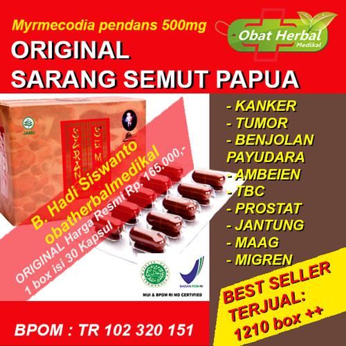 Foto Produk Obat Benjolan Payudara, Kanker & Tumor Payudara Sarang Semut 30 Kapsul dari Obatherbalmedikal
