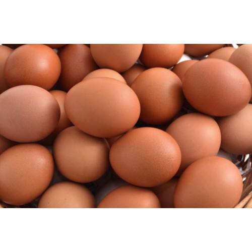 Foto Produk Telur / Telor Ayam kg ( kilogram ) dari Telur Indonesia