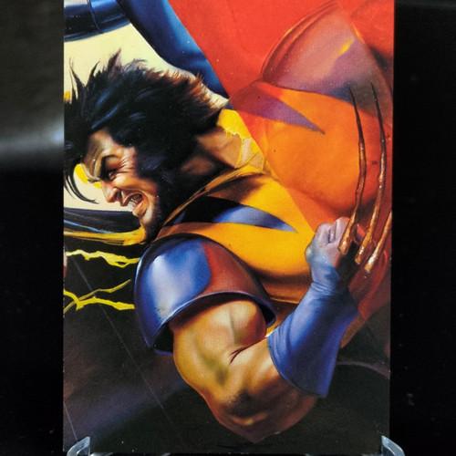 Foto Produk Impact insert DC vs Marvel Wolverine Emboss trading card dari Charu Toys