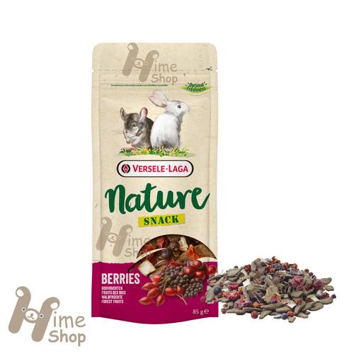 Foto Produk Versele Laga Nature Snack Berries 85gr Hamster Marmut Kelinci Chinchil - EXP 2021-08 dari Hime petshop