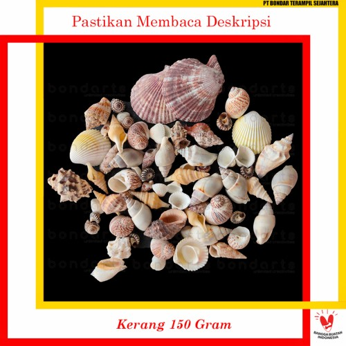 Foto Produk Aksesoris Cangkang Kerang Hias Prakarya Dekorasi bondarts - Kerang 150 Gram dari BONDARTS