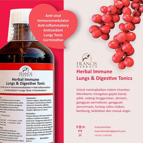 Foto Produk Francis Herbals Immune, Lungs & Digestive Tonic Children 330 ml dari Karuna Holistic Wellness