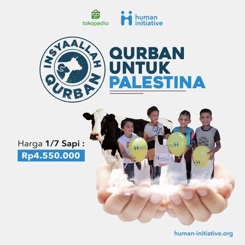 Foto Produk Qurban 1/7 Sapi di Palestina dari Human Initiative
