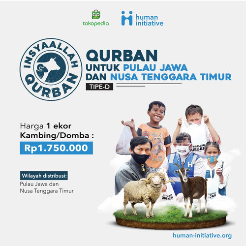Foto Produk Qurban Kambing / Domba dari Human Initiative