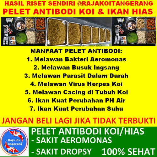 Foto Produk PELET ANTIBODI IKAN KOI UKURAN 5 MM (MEDIUM) dari Raja Koi Tangerang