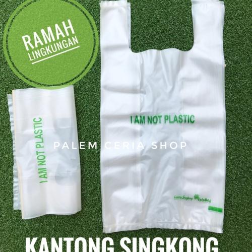 Foto Produk Kantong (24x39cm) Ramah Lingkungan dari Singkong - Produk Indonesia dari Palem Ceria Shop