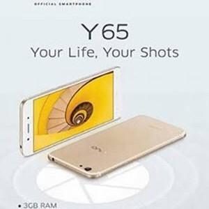 Foto Produk Vivo Y65 Ram 3Gb warna Gold Dan Black ram 3Gb dari JA789