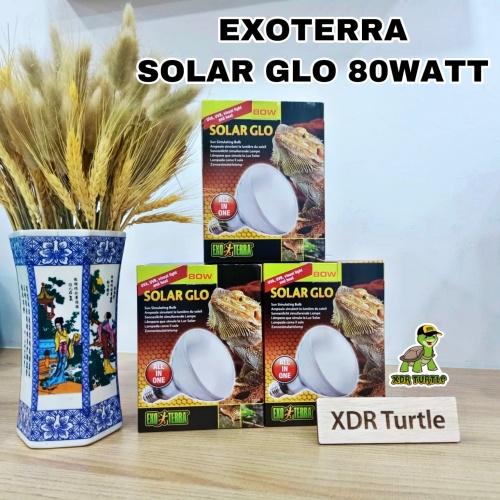 Foto Produk EXOTERRA SOLAR GLO 80WATT LAMPU UVAUVB BEARDED DRAGON SULCATA ISTAR dari XDR TURTLE