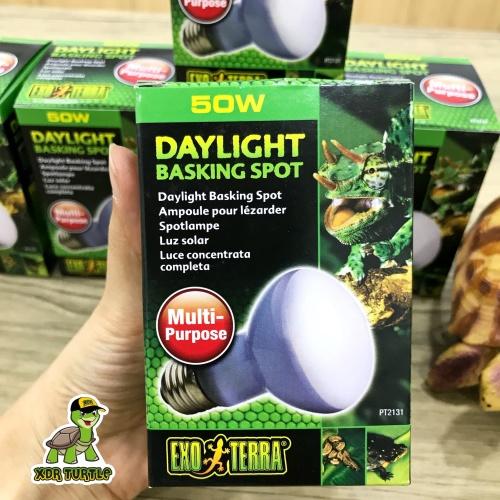 Foto Produk EXOTERRA DAYLIGHT BASKING SPOT 50WATT LAMPU EXOTERRA REPTIL TORTO dari XDR TURTLE