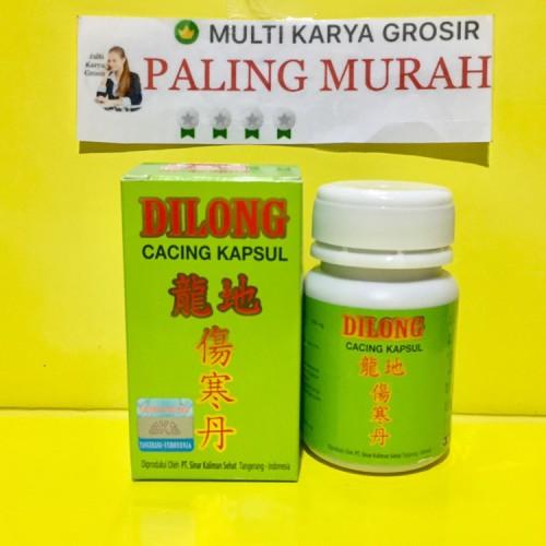 Foto Produk Dilong Kapsul Cacing Obat Tifus / Tipes / Typhus / Panas Dingin dari MULTI KARYA GROSIR