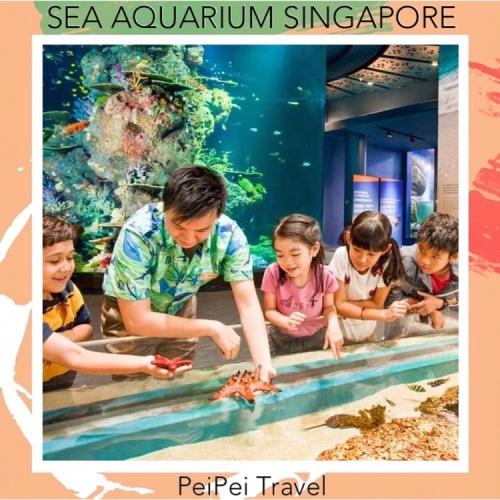 Foto Produk tiket sea aquarium singapore anak dari PeiPei Travel