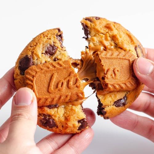 Foto Produk Lotus Biscoff Chocolate Chip cookies - Non Vegan dari Endorphins Cookie