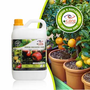 Foto Produk Pupuk Tabulampot Organik GDM 2 Liter dari GDM Official Store