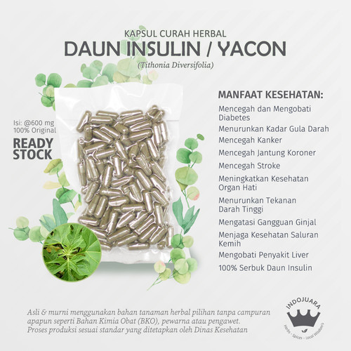 Foto Produk DAUN INSULIN YACON 100 Kapsul Curah Herbal Stroke Diabetes Liver Hati dari Indojuara
