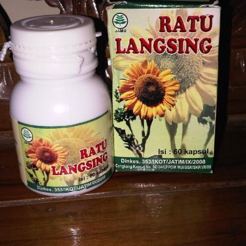 Foto Produk Ratu Langsing dari e.k.a Health And Care