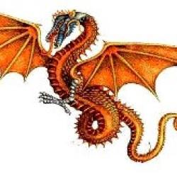 Foto Produk Dragon touch dari Spades Magic