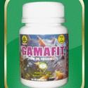Foto Produk GAMAFIT dari Herbal Online Shop
