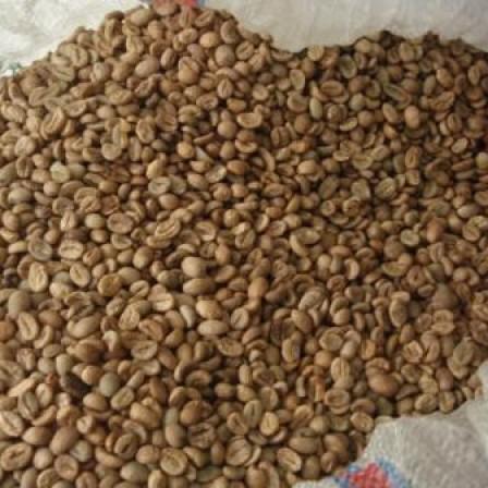 Foto Produk Kopi Luwak Green Beans dari DW Coffe Shop
