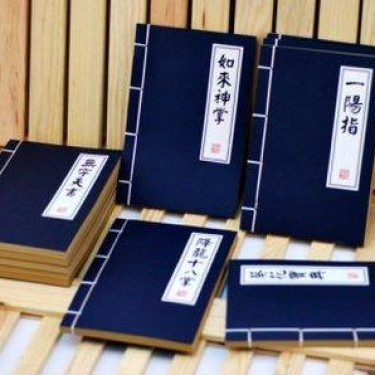 Foto Produk Wushu Book (Kung Fu Book/chinese Book) dari GERAI UNIK