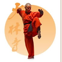 Foto Produk Shaolin Warrior - Rou Quan (Soft Fist)   Gerakan/jurus kung fu shaolin bermanfaat untuk kesehatan tubuh dan pikiran  dari Tokobukuplus