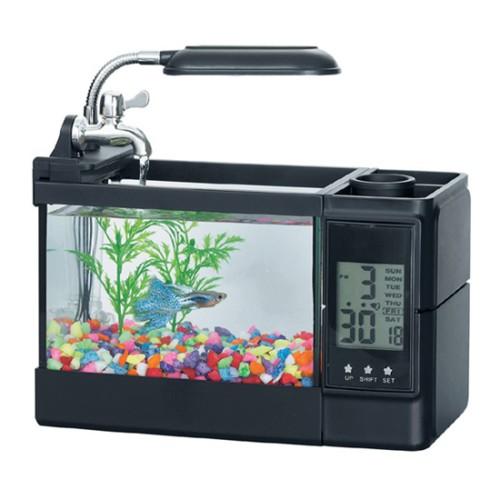 Foto Produk Mini Aquarium dari GERAI UNIK