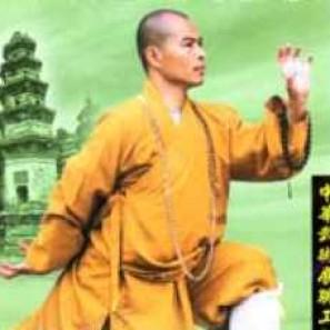 Foto Produk DA MO YI JIN JING   Tehnik Ampuh Mengolah Tenaga Dalam Metode Shaolin dari Tokobukuplus
