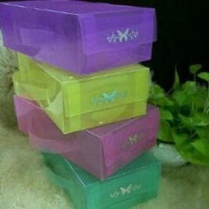 Foto Produk Kotak Sepatu Transparan Basic M Full Colours dari SHINE GROSIR