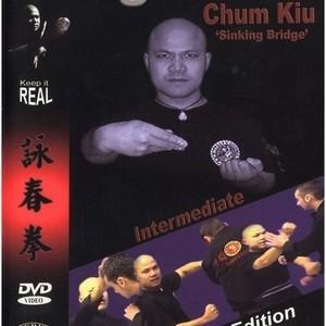 Foto Produk Master Wong Wing Chung Chum Kiu | Video Tutorial gerakan dan jurus-jurus Wing Chun Chum Kiu dari Tokobukuplus