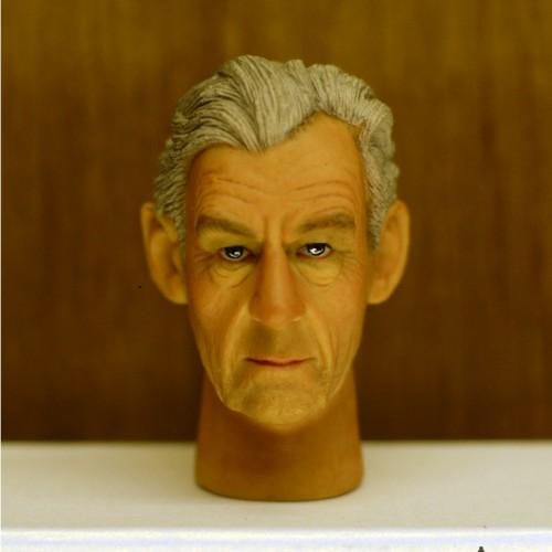 Foto Produk Headplay 1/6 Ian McKellen Alike Custom Head Sculpt dari Chasadya Hobby Shop