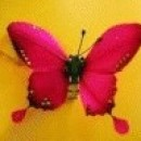Foto Produk Kupu-kupu (Merah) dari Perdana Shop