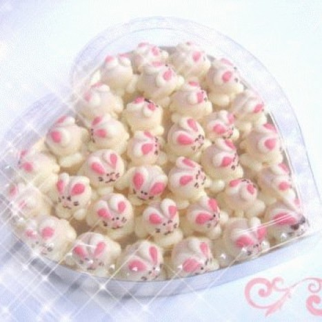 Foto Produk little sweet bunny in clear heart dari Choco Shop