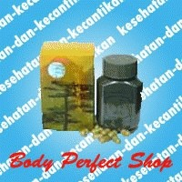 Foto Produk Penggemuk Badan Ginseng Kianpi Pil dari Body Perfect Shop