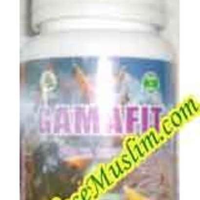 Foto Produk Gamafit 60 Kapsul (Gamat 100%) dari EtalaseMuslim.com