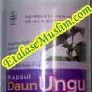 Foto Produk Kapsul Ekstrak Daun Ungu Tazakka dari EtalaseMuslim.com