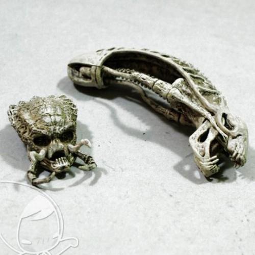 Foto Produk Predator & Alien Skull set of 2 Neca dari Charu Toys