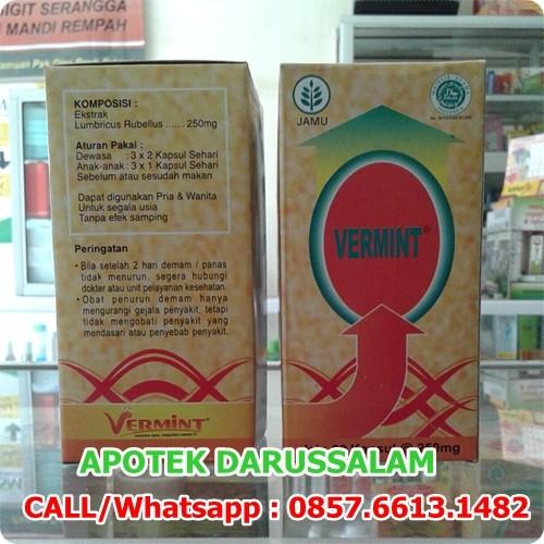 Foto Produk Vermint Kapsul Cacing 30 Kapsul dari DARUSSALAM-Online