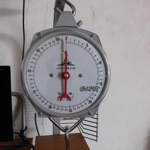 Foto Produk Timbangan Gantung 50kg Untuk Laundry dari putrimadani