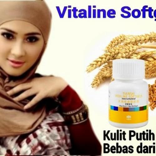 Foto Produk Vitaline Tiens dari Gudang Produk Tiens