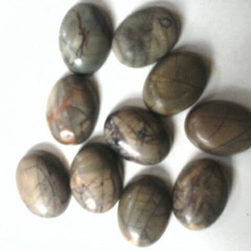 Foto Produk batu sisik naga dari wildan-store