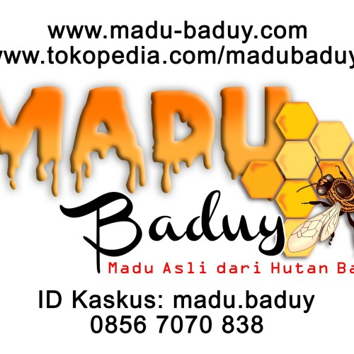 Foto Produk Supplier Madu Asli Lebah Liar Hutan Baduy, Banten. Hanya JABODETABEK. dari Madu Baduy