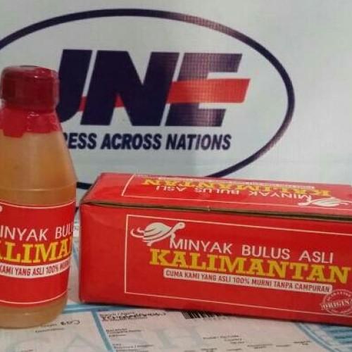 Foto Produk Minyak Bulus Asli Kalimantan 100 ml dari EcerGrosir Online