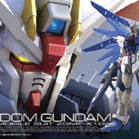 Foto Produk RG Freedom Gundam dari Hobby Japan