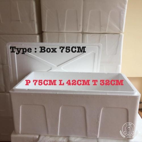 Foto Produk Styrofoam box besar AG 75CM /kotak gabus /box frozen food dari IvanPlastik