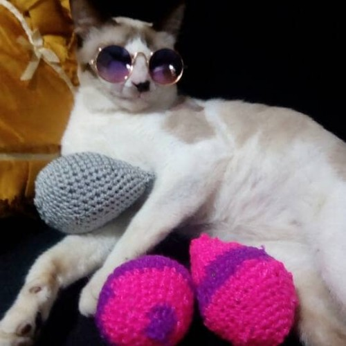 Foto Produk bola kenari mainan untuk kucing dari alhamdulillahshop