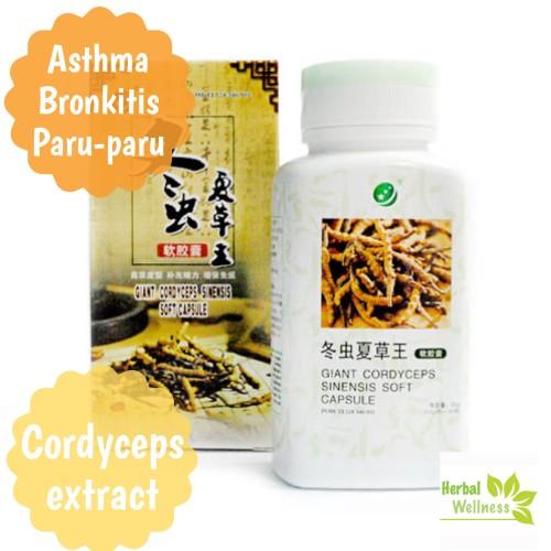 Foto Produk Giant CORDYCEPS soft capsule dari Herbal Wellness