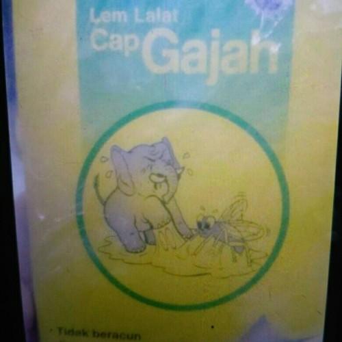 Foto Produk lem lalat kertas cap gajah dari Ramdan acc