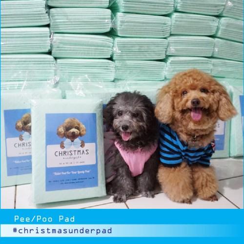 Foto Produk Christmas Underpad Pee Pad Toilet Training Anjing 10 lembar dari Christmas Underpad